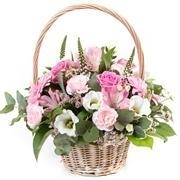 Basket Beauty